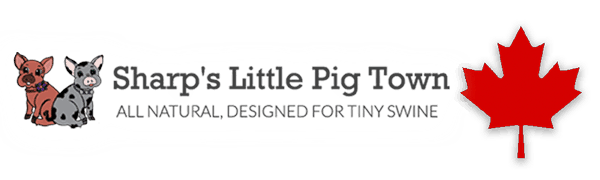 Miniature Pig Feed in Canada
